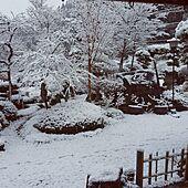 2017/1/12/おはようございます✩.*˚/いつもいいねやコメントありがとう~/雪景色/今日の1枚のインテリア実例 - 2017-01-12 08:42:52