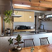 トーヨーキッチン/造作建具/木製建具/観葉植物/パントリー...などのインテリア実例 - 2021-02-20 12:08:14