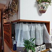 キッチン/ドライフラワーのある暮らし/観葉植物/ワンコと暮らす家/マンション暮らし...などのインテリア実例 - 2021-08-04 21:15:21