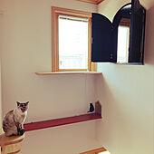 猫トンネル/キャットウォークのある家/キャットウォーク/北欧/輸入住宅...などのインテリア実例 - 2021-04-13 01:45:08