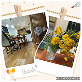 夏/植物のある暮らし/逢/ベッド周り/毎月の足跡のインテリア実例 - 2021-08-03 20:08:37
