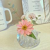 可愛い♡/花びん/植物のある暮らし/MICHI-KUSA/玄関/入り口のインテリア実例 - 2021-08-04 09:07:27