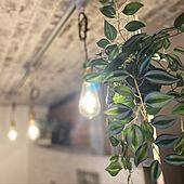 照明/壁/天井のインテリア実例 - 2021-05-14 11:43:17