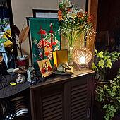 玄関/入り口/こどもの日/観葉植物/照明/雑貨のインテリア実例 - 2021-04-09 23:48:56