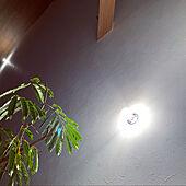壁/天井/階段照明/吹き抜け階段/エバーフレッシュ/梁...などのインテリア実例 - 2021-02-19 23:34:52