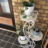 フラワースタンド/多肉植物/シュガーバイン/オリーブの鉢植え/植木鉢...などのインテリア実例 - 2020-04-09 09:24:52