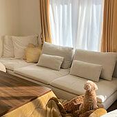 IKEA/ソーデルハムン/ローソファー/こたつ/ペットと暮らすインテリア...などのインテリア実例 - 2021-05-03 12:33:17