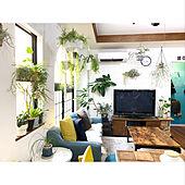グリーンのある暮らし/ボタニカルライフ/植物のある暮らし/インスタ→kiki_nekko/観葉植物...などのインテリア実例 - 2020-04-06 18:20:50