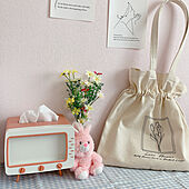 ペイント/ピンクの壁/造花/チューリップ/巾着バッグ...などのインテリア実例 - 2021-05-09 21:14:38