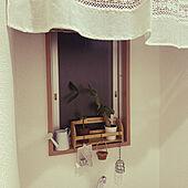 ナチュラルキッチン/ダイソー/3COINS/バス/トイレのインテリア実例 - 2021-05-10 20:58:49
