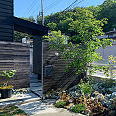 ジューンベリー/シンボルツリー/シンプルな暮らし/小さいお家/小さな家...などのインテリア実例 - 2021-05-13 19:55:33