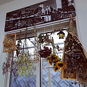 壁/天井/夏の模様替え/夏の花をドライフラワーに/RCの出会いに感謝♡/いいね&フォローありがとうございます♡...などのインテリア実例 - 2021-07-14 17:18:51