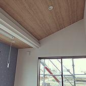 壁/天井/アクセントクロス/Moomin/勾配天井/物干し竿のインテリア実例 - 2021-04-06 18:41:06