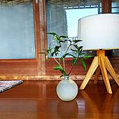 玄関/入り口/昭和レトロ/古い家/日本家屋/昭和の家...などのインテリア実例 - 2021-04-12 08:51:22