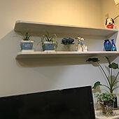 ブルーの紫陽花❁⃘*.゚/リビングインテリア/花瓶/植物のある暮らし/見てくださってありがとう❁︎...などのインテリア実例 - 2021-05-08 19:16:25