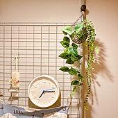 マンション暮らし/アロマワックスバー/natural kitchen/ナチュラルキッチン/ダイソーのフェイクグリーン...などのインテリア実例 - 2021-08-05 17:00:41