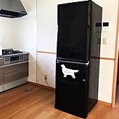 ハウステックキッチン/ゴールデンレトリバー/370L/冷蔵庫/MITSUBISHI冷蔵庫...などのインテリア実例 - 2019-05-24 16:57:39