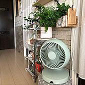 DCサーキュレーター扇風機/グリーン増やし中/グリーンのある暮らし♡/扇風機・サーキュレーター/DULTON...などのインテリア実例 - 2021-07-28 10:19:32