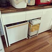 キッチンのゴミ箱/ナチュラル/雑貨/カフェ風を目指して♪/カフェ風インテリア...などのインテリア実例 - 2020-10-30 15:42:41