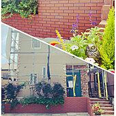 外構/小さなお家/外壁塗装/アンティーク/駐車場...などのインテリア実例 - 2020-08-05 15:41:27