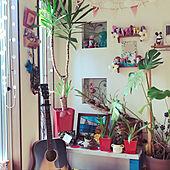 観葉植物/DIY/ハワイアン/セリア/玄関/入り口のインテリア実例 - 2021-05-13 15:50:27