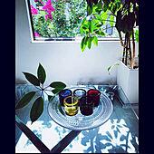 ガラステーブル/kivi五輪/植物のある暮らし/夏の記録/ホワイトインテリア...などのインテリア実例 - 2021-07-28 23:55:32