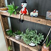 ラブリコ/クリスマス/観葉植物/緑のある生活/DIY...などのインテリア実例 - 2020-11-25 08:16:11