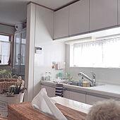 二階のキッチン/西陽のカーテン越し☀︎/西陽が強い/いいね、フォロー本当に感謝です♡/お家時間...などのインテリア実例 - 2021-07-20 16:22:25