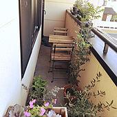DIY/玄関/入り口のインテリア実例 - 2021-04-17 08:28:13