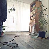 リビング/ユーカリ/蔓/無垢の床/オーク材...などのインテリア実例 - 2020-11-23 09:36:28