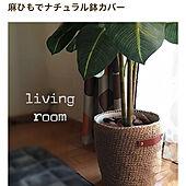 フェイクグリーン/ハンドメイド/鉢カバー手作り/麻ひも編み/いいねありがとう(*´꒳`*)...などのインテリア実例 - 2019-11-28 12:14:51