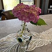 ガラス瓶/紫陽花/花びん/ほっこり/あたたかい暮らし...などのインテリア実例 - 2021-06-20 15:58:26