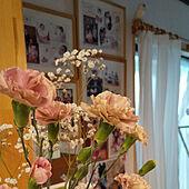 リビング/花のある暮らし/工務店の家のインテリア実例 - 2021-05-08 14:54:46