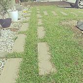 玄関/入り口/庭/芝生の庭/芝生/平屋のインテリア実例 - 2021-09-23 11:47:23