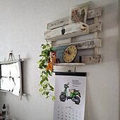 キッチン/セリア/アートギャラリー/いなざうるす屋さん/kanichi fujiwaraのインテリア実例 - 2020-10-10 11:49:15