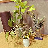 ラベンダー/花びん/ナチュラル/ポトス/パイナップルの葉...などのインテリア実例 - 2021-06-18 17:18:40