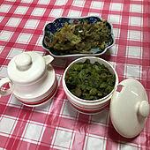 昭和の入れ物/ふきのとうの天ぷら/ふきのとう味噌/昭和レトロ/キッチンのインテリア実例 - 2021-04-17 12:06:48