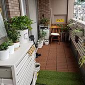 玄関/入り口/DIY/ダックスフンド/わんこのいる暮らし/観葉植物...などのインテリア実例 - 2020-07-12 20:58:47