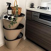 マーチソンヒューム/キッチンのゴミ箱/観葉植物/雑貨/かご...などのインテリア実例 - 2020-10-31 15:33:30
