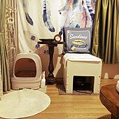 猫ちゃん想い/ニャンとも/ねこと暮らす。/ねこのいる日常/猫トイレ...などのインテリア実例 - 2021-06-15 20:16:28