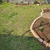 玄関/入り口/芝生/芝生の庭/庭改造中/花壇...などのインテリア実例 - 2021-06-24 09:24:38