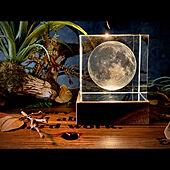 灯り/間接照明/ステンシル/インダストリアル/男前...などのインテリア実例 - 2020-12-14 18:12:40