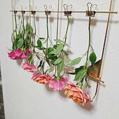 壁/天井/観葉植物/ナチュラル/子ども/お花...などのインテリア実例 - 2021-05-18 19:28:46