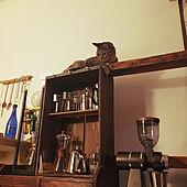 子猫と暮らす/猫カフェ風/猫/賃貸/コーヒーコーナー...などのインテリア実例 - 2021-06-23 22:11:40