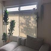 光と風を心地よく調節♡ブラインドで洗練されたお部屋に