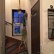 階段のインテリア実例