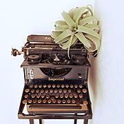 タイプライターのインテリア実例