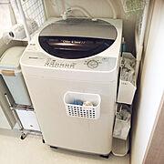 洗濯ネットのインテリア実例