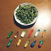 山菜のインテリア実例