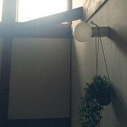 レムノス カンパーニュ/Lemnos/エアープランツ/ホワイトインテリア/一軒家…などに関連する他の写真